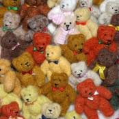 Miniatur-Bären